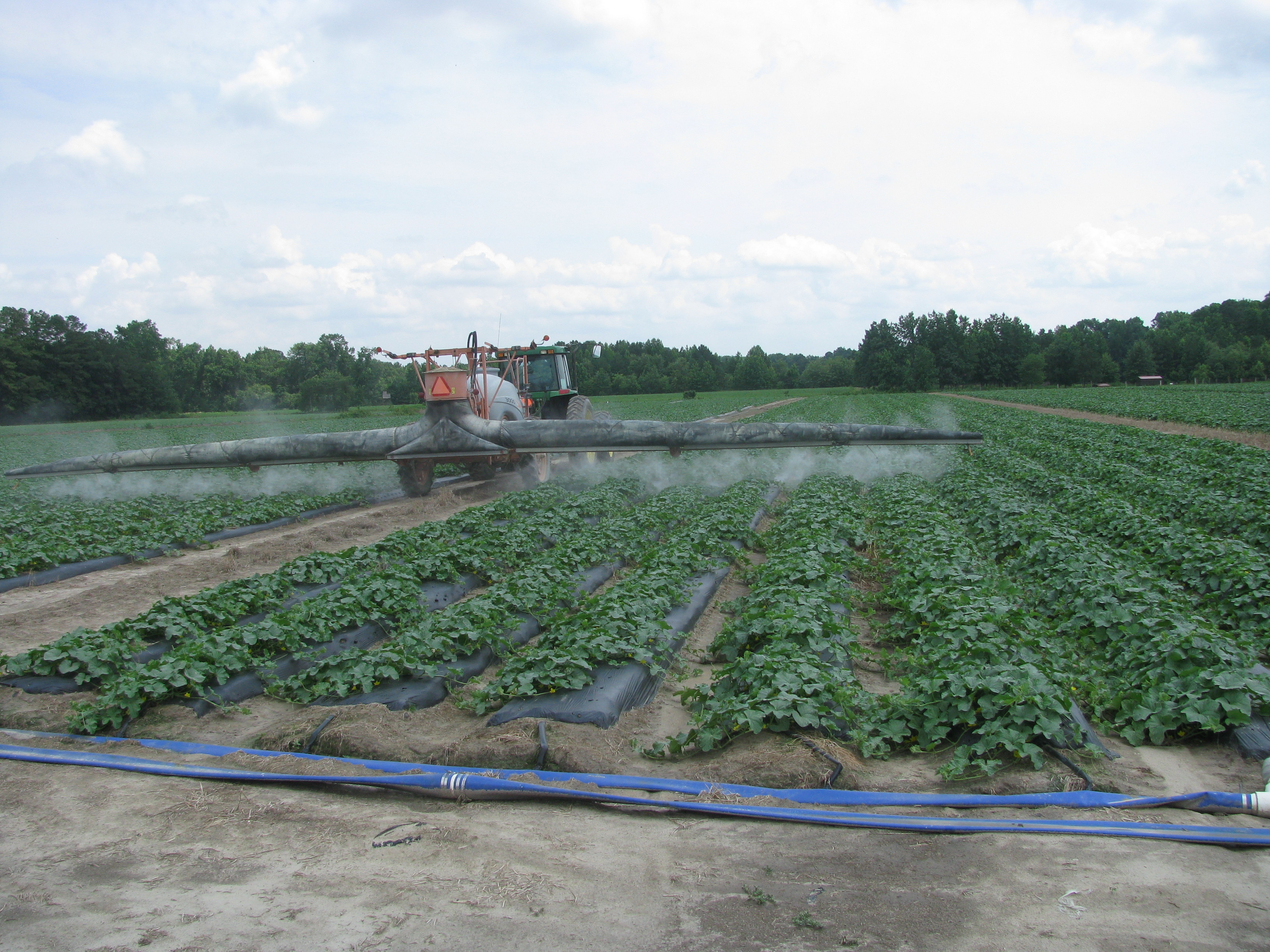 An important ingredient for Vegetable production - a good sprayer